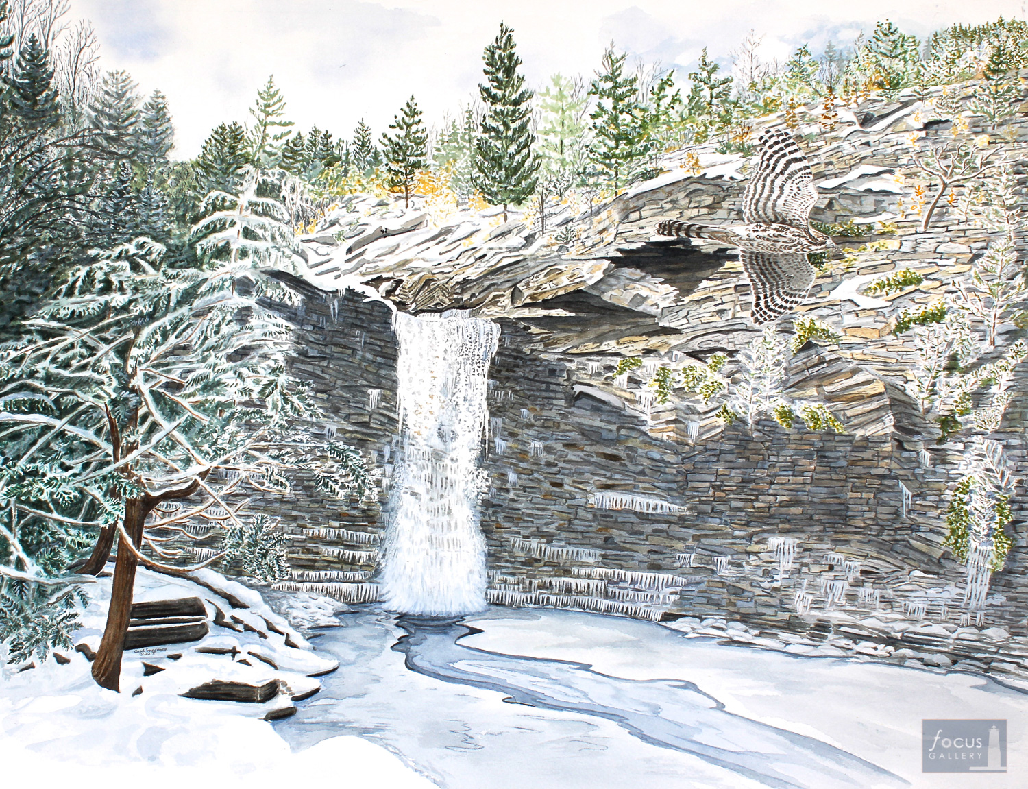 Original watercolor painting of a Cooper's Hawk blending in with the patterns of Awosting Falls in the winter.