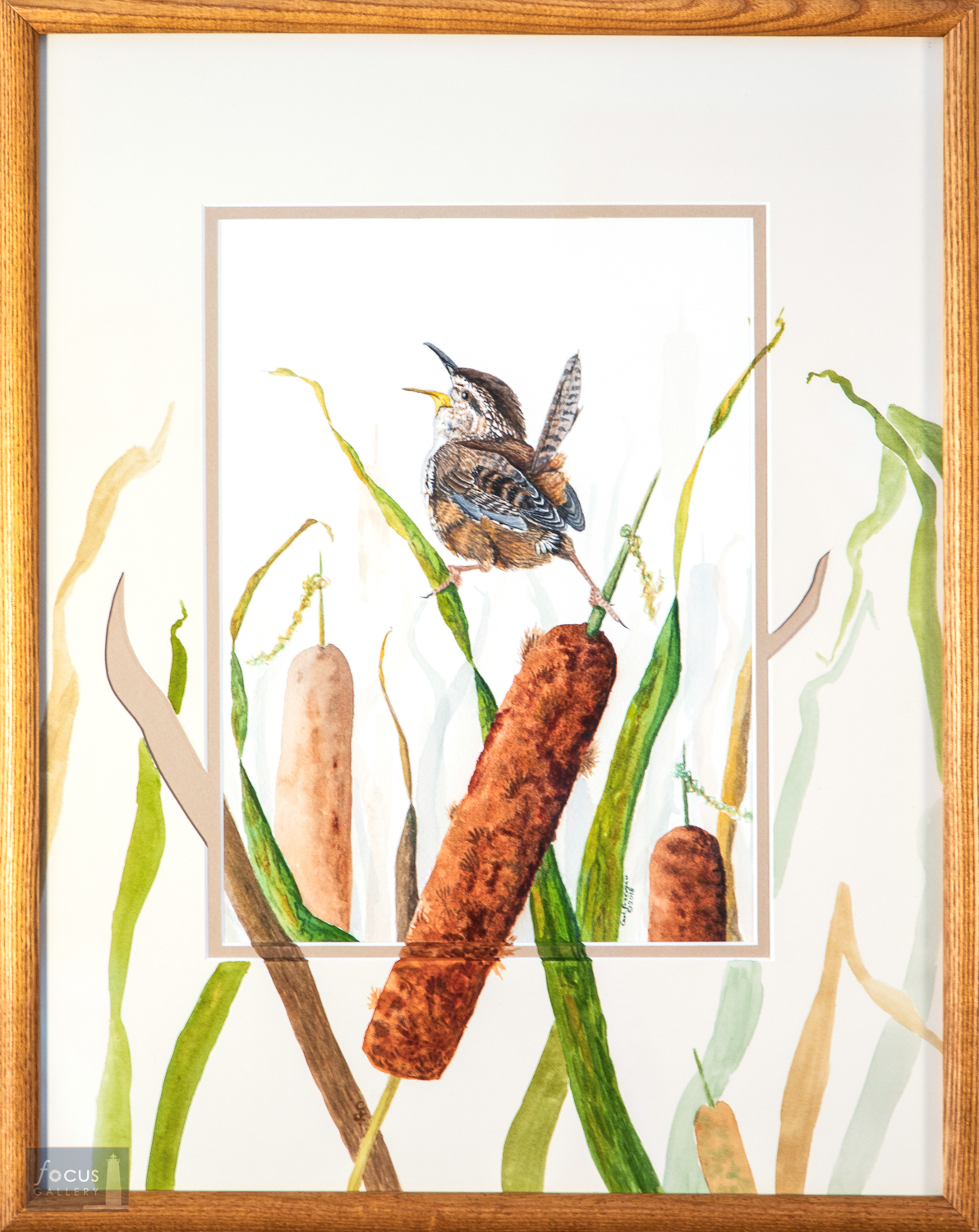Original watercolor painting with embellished mat featuring a Marsh Wren signing atop a cattail bulrush.