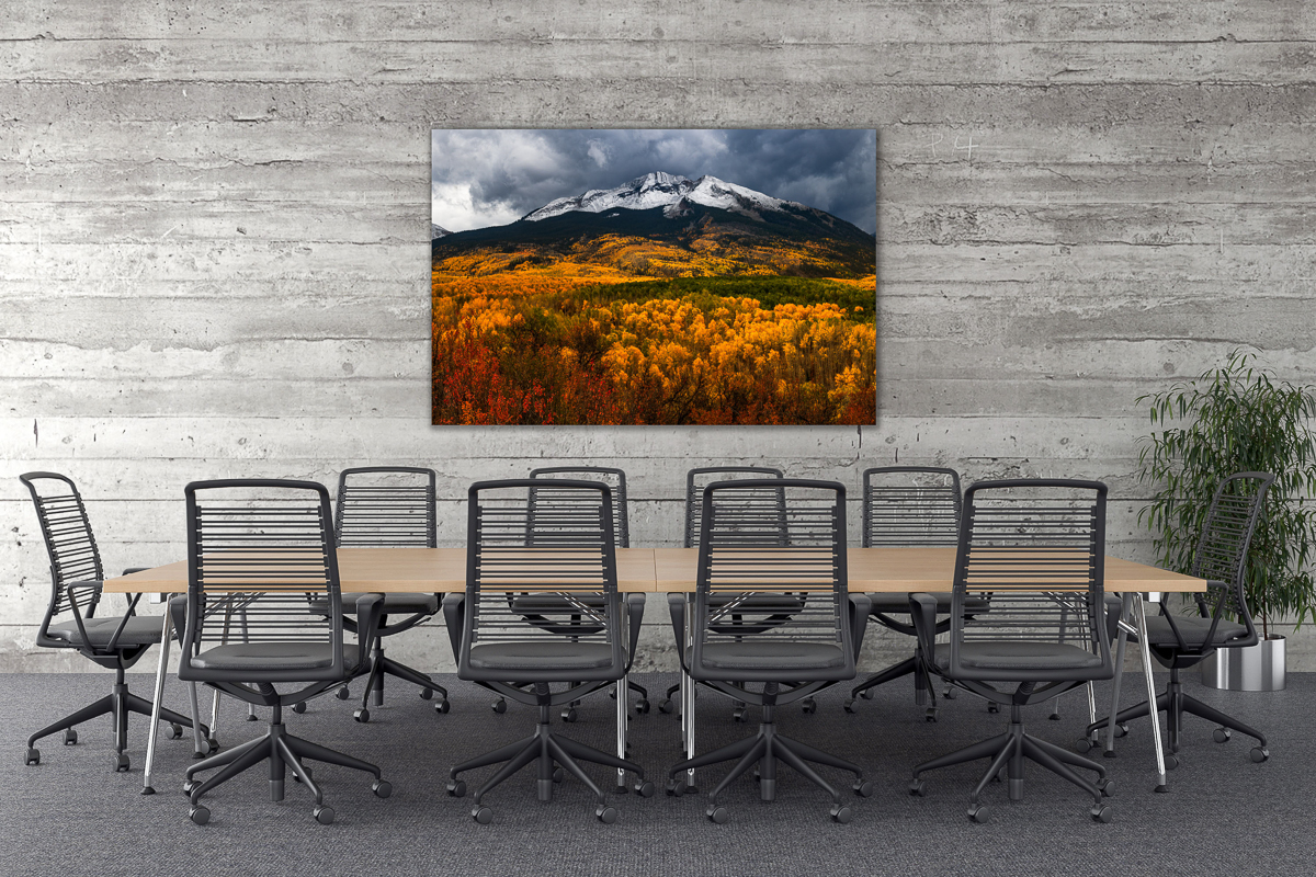 conference-room-prints
