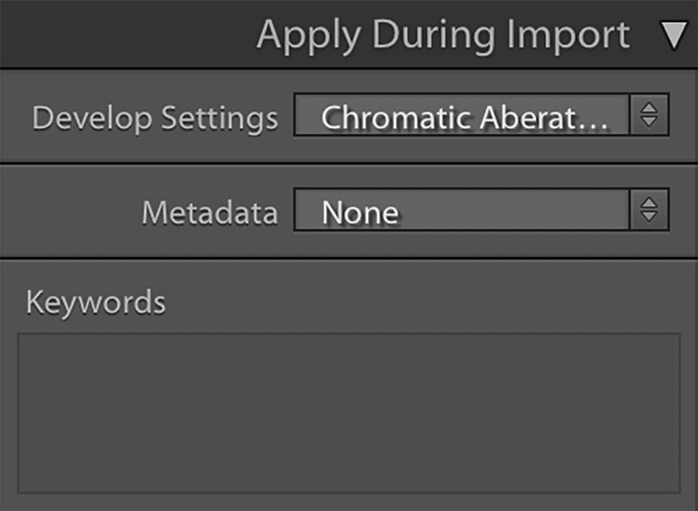 Apply during import Lightroom settings