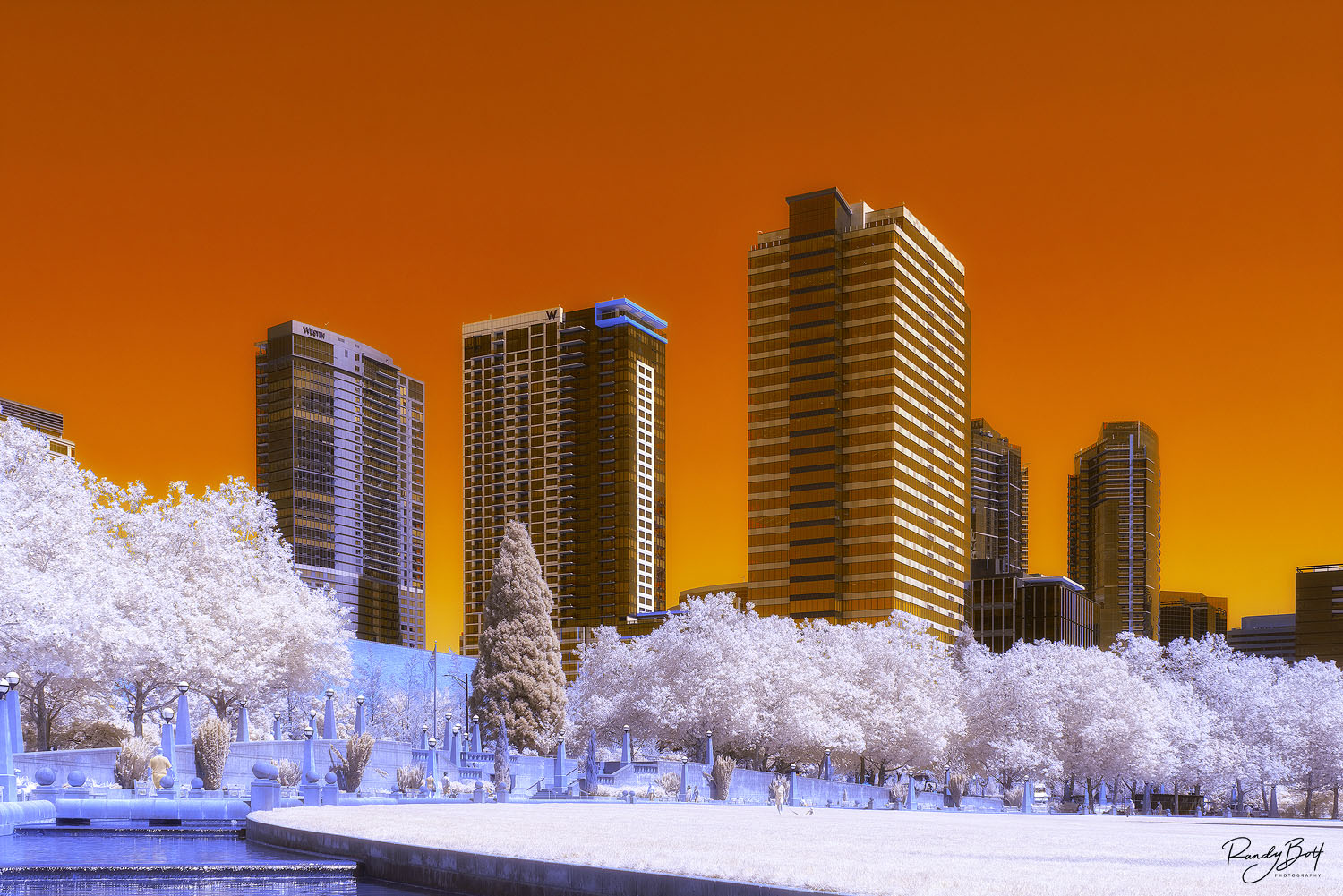 590 nm super color infrared of downtown bellevue, Washington